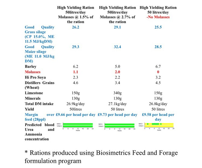 Improve your forage intakes with Cane Molasses